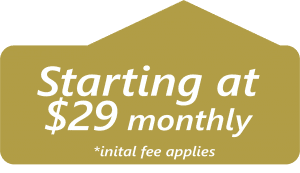Starting at $29 per month